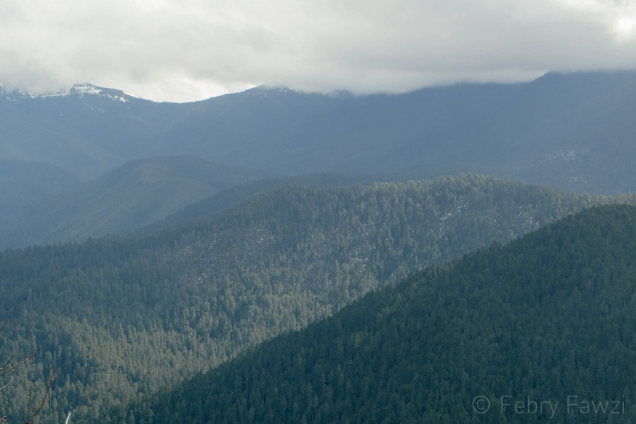 Hurricane Ridge Olympic National Park - by Febry Fawzi-3